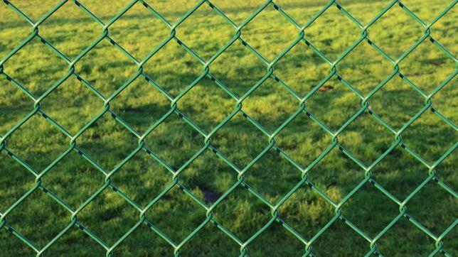 Siatka ogrodzeniowa ocynk+ PCV  -Zielona H-1,5- PRODUCENT- Dostępna