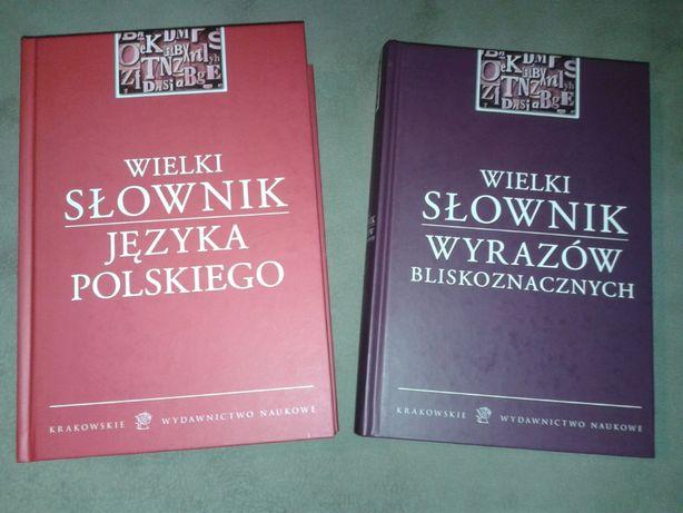 Książka Wielki Słownik Języka Polskiego Wyrazów Bliskoznacznych nauka