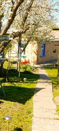Продам будинок  в центрі  Ржищева