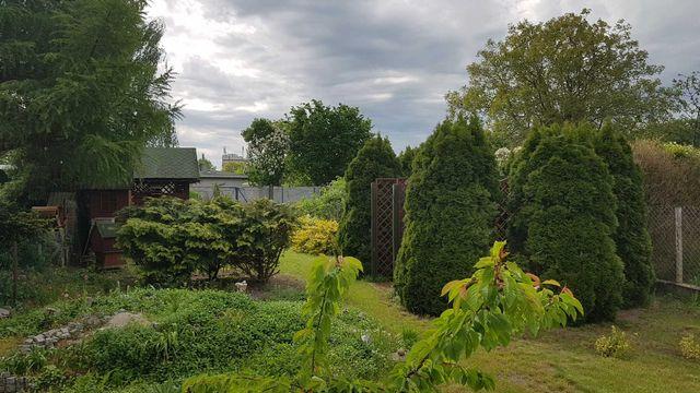 Sprzedam dom z ogrodem na Pogodnie