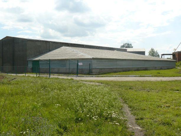 Складські приміщення із земельною ділянкою в м. Бар Вінницької області