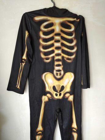 Скелет 10-11-12 лет 140-150 см