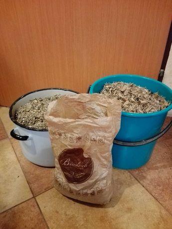 AKSAMITKA nasiona na poplon ponad 1 kg wysyłka tylko 8 zl lub 11 zl