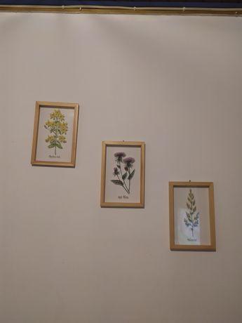 Decoração de parede 3 quadros