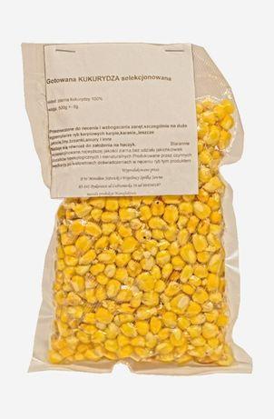 Uniwersalna zanęty z kukurydzy