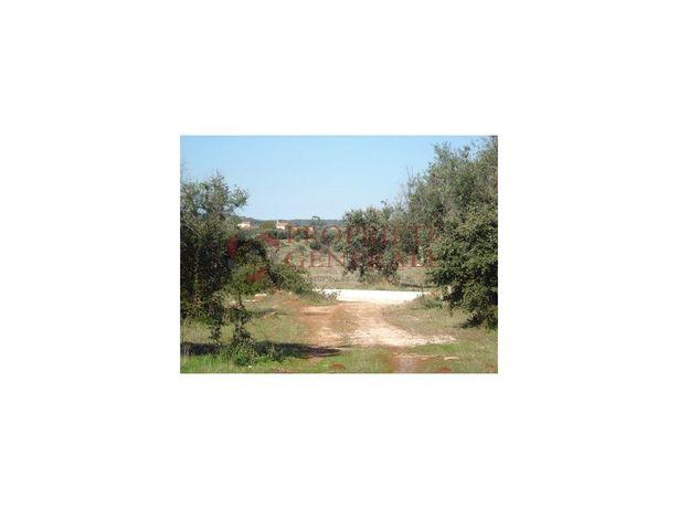 Terreno para construir até 7 Moradias - Évora / Borba