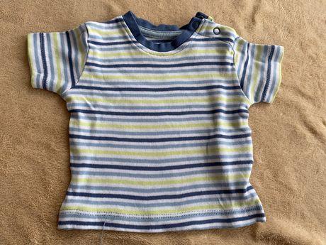 Podkoszulka t shirt z krótkim rekawkiem 59/56