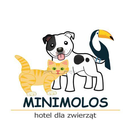 Hotel dla psów, hotel dla zwierząt, kujawsko-pomorskie