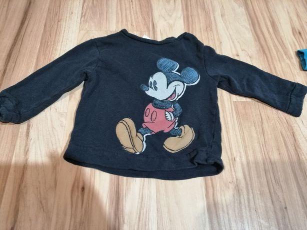 Zara bluza 98 myszka miki