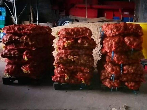 Ziemniaki prosto od rolnika bez nawozów najlepiej tirowe ilosci Vineta