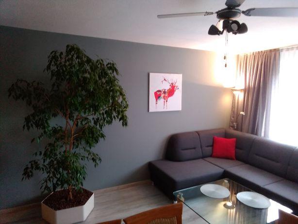 Apartament Domotel TM LUX - kwatera 120 m² w centrum dla 6 os.