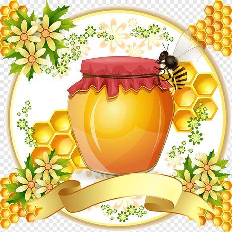 Продам, мёд домашний