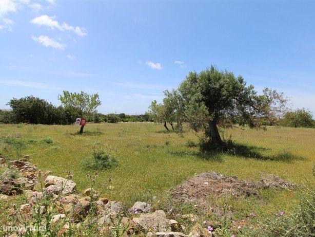 Terreno rústico com 6540 m2, Estoi, Faro