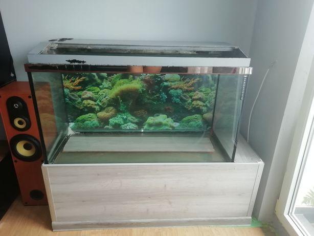 Akwarium 300l