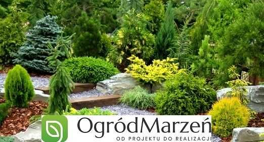 Zakładanie i pielęgnacja ogrodów, trawniki, systemy nawodnienia