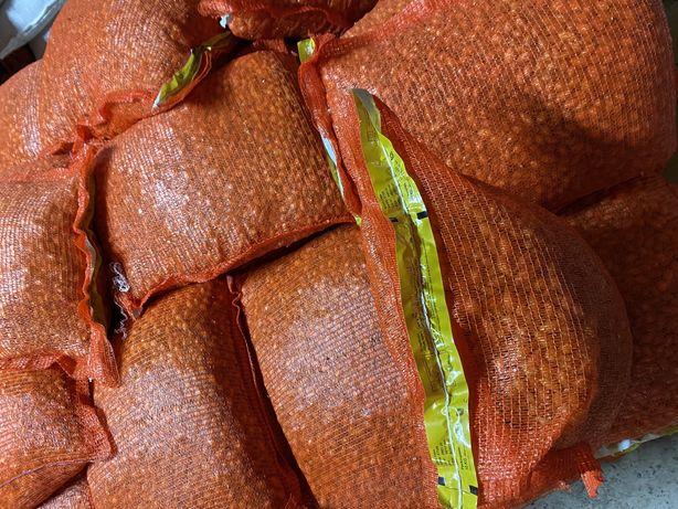 Продам цибулю сіянка тиканка лук севок 100 %голандія цибіля саджанка