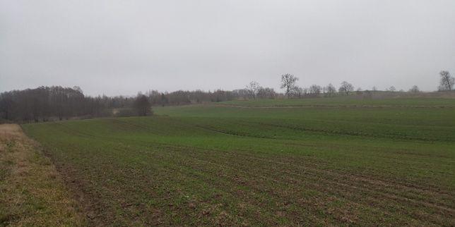 7ha ziemi rolnej blisko jeziora niedaleko cichej wsi, warunki zabudowy
