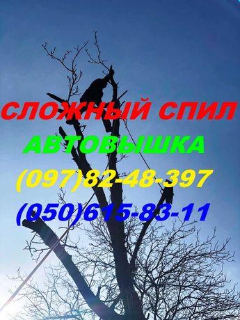 СПИЛ деревьев с АВТОВЫШКОЙ и альпинистским методом