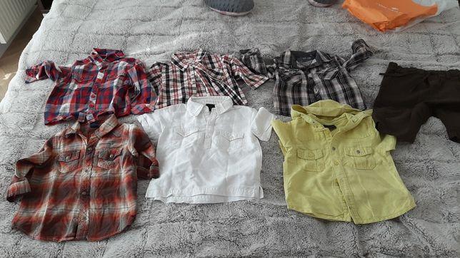 Koszule dla chłopca Next, Gap