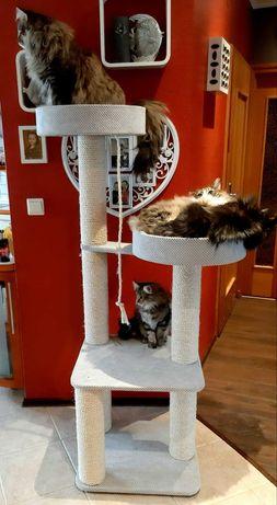 NR2 Drapak dla kota solidny dużych kotów 45cm rozety lub 50cm