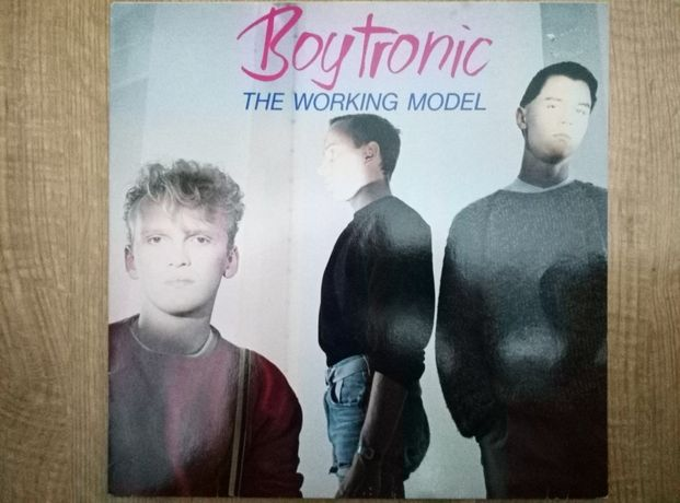 Boytronic the working model winyl.