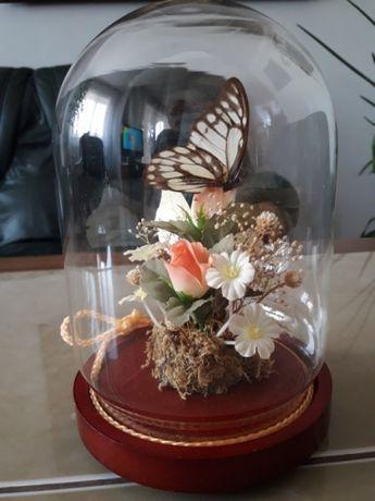 Wieczne motyle pod szklaną kopułą