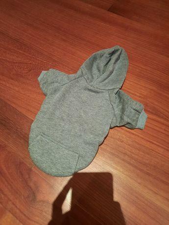 Camisola para cão porte pequeno