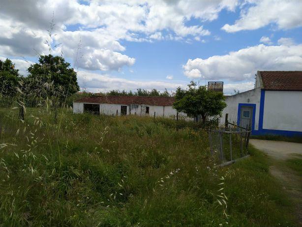 Quintinha no Alentejo (85Km Lisboa), 5500 m2 - Vendas Novas