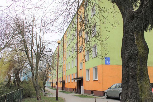 WYNAJEM mieszkania: 1200 zł: 3maja, cztery pokoje, trzecie piętro