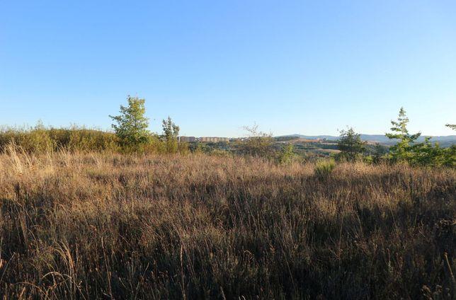 Arrendam-se terrenos para projectos de agricultura