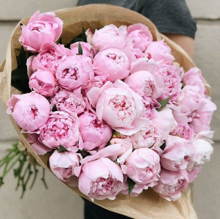 Піони,піони львів,півони,квіти львів,доставка квітів,букети,піоновидні Львов - изображение 1