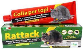 pułapka na myszy nornice szczury 135 g KLEJ