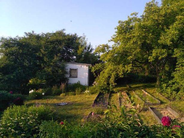 Ogródek działkowy Nałęczowska Lublin
