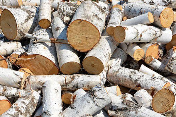 Drewno Opałowe Brzoza