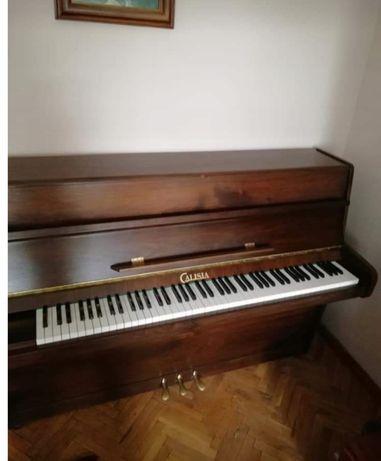 Nowe pianino Calisia ciemny dąb okazja!!