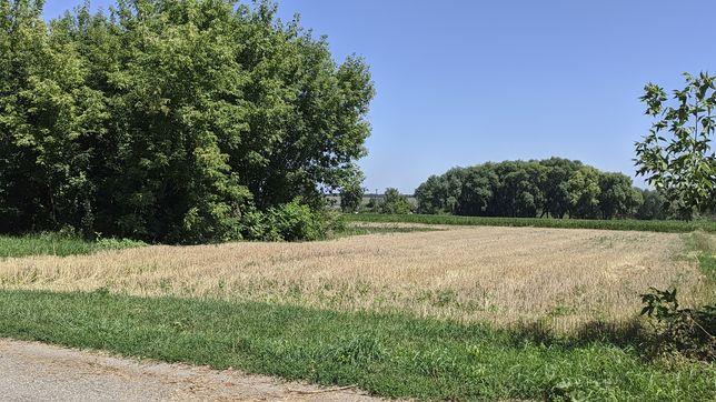 Продам земельну ділянку під забудову на березі ставу 19 сот. с.Глушки