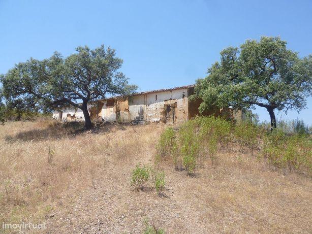 Herdade com 12 hectares e moradia em São Bartolomeu de Messines