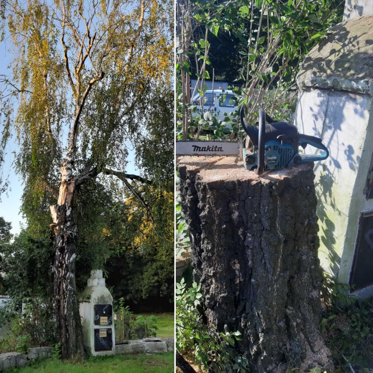wycinka drzew od 20 zł, drzew  trudnych karczowanie działek sprzątanie