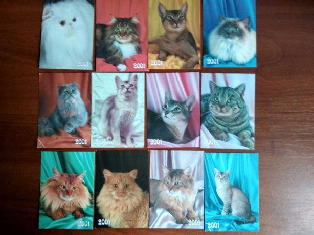календари из серии коты