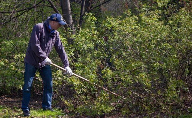 Мы проводим благоустройство и уборку территорий и на участках