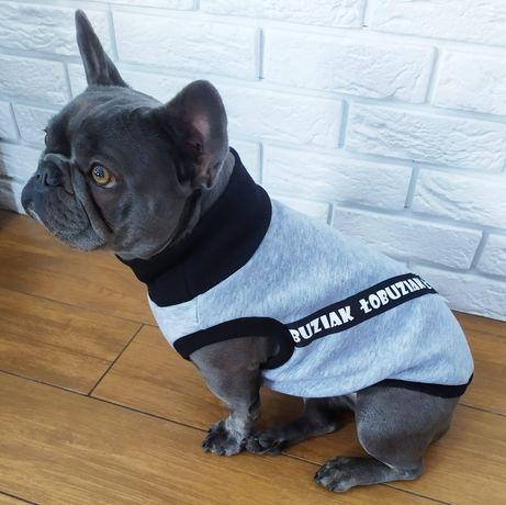 Ocieplana bluza dla psa
