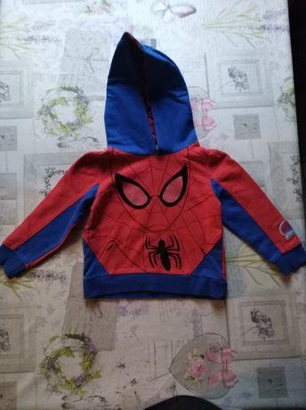 Bluza Spider-Man