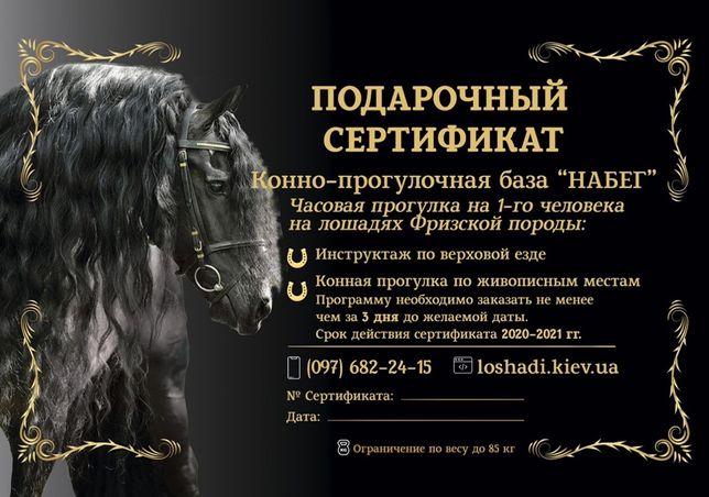 Подарочные сертификаты конная прогулка на королевских лошадях