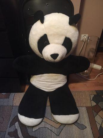 Mis panda wielki, oddam