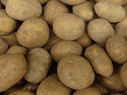 Продається картопля