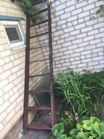 лестница МАШР И лесница стремянка