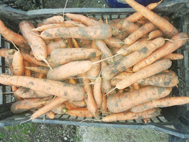 Продам моркву Вирощена на власному городi...