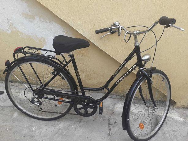 Bicicleta Pateleira homem