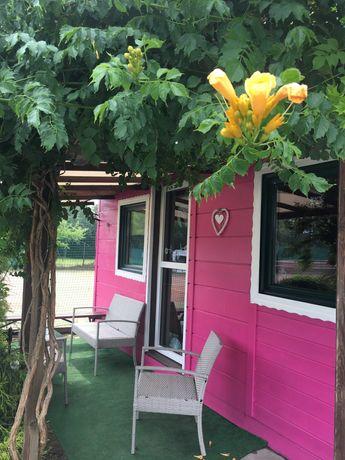Flamandia Ośrodek z Domkami Kort Sauna Jacuzzi Plac Zabaw Rzeka