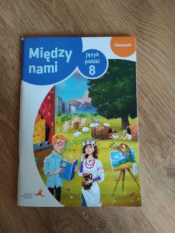 Ćwiczenia język polski klasa 8 między nami czyste nowe